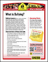 SSI Bullying Website Image KCSS What Is handout