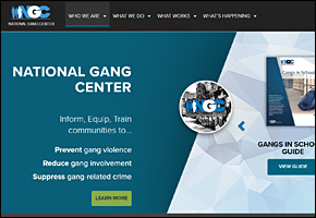 SSI Gangs Website Image NGC