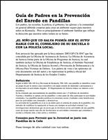 SSI Gangs Website Image Spanish Handout