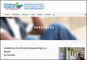 SSI Suicide Website Image NCSCB Guidelines